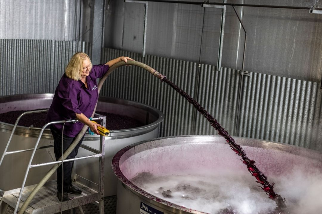 winemaking_with_jo